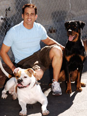 Anthony Giammarco, Dog Trainer, next to a Rottweiler Dog and an American Bulldog.